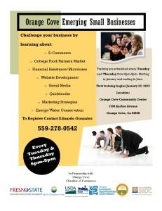 Emerging Small Businesses - Training Workshops